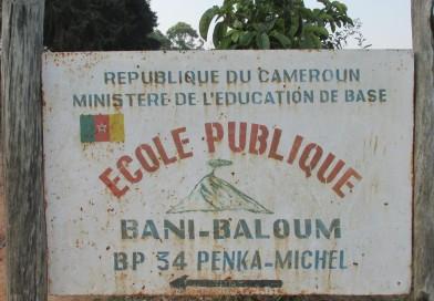 Fermeture des écoles et des frontières pour contenir le coronavirus au Cameroun