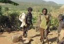 L'Afrique peut empêcher l'Éthiopie de suivre la voie du Rwanda