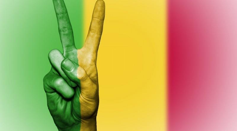 Le Mali est indigné de la déclaration du président français.